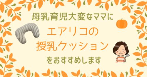 エアリコの授乳クッションのブログ記事